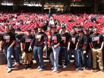 Lions introduced at Reds' game